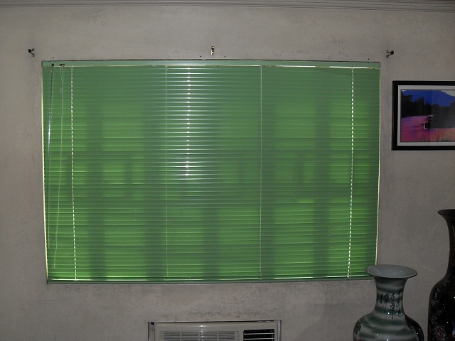 DS Windows & Walls Venetian Blinds