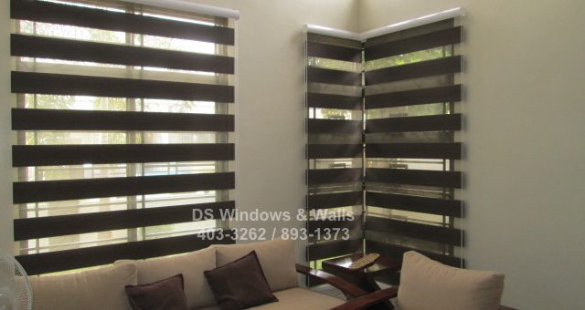 Dark Brown Choco Colored Window Shades Latest Projects